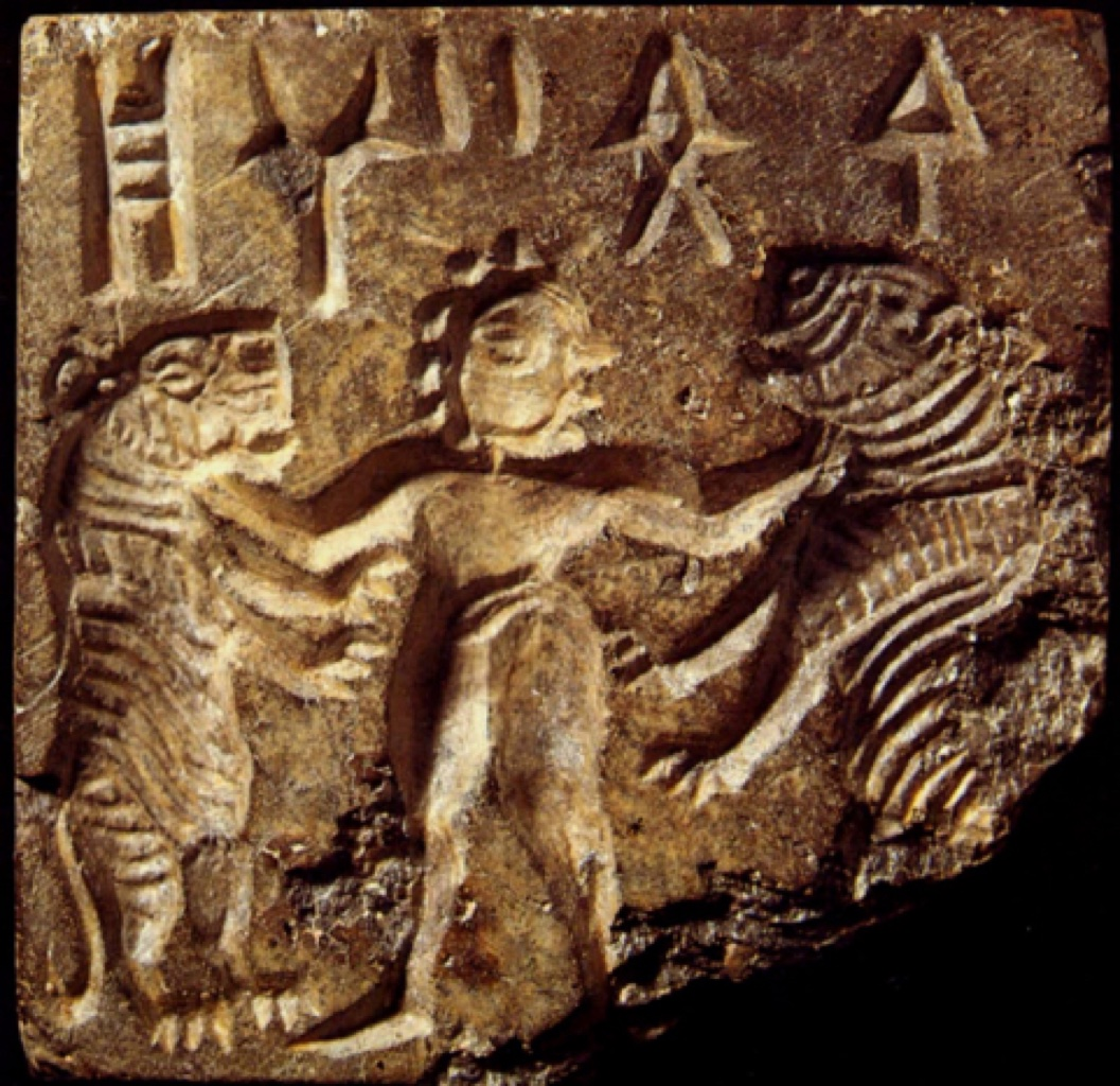 indus valley civilisation essay Comparison and contrast of mesopotamia and the indus valley 1508 words nov 22nd, 2004 7 pages mesopotamia and the indus valley civilizations have long been compared throughout history and were both some of the earliest civilizations in the world.